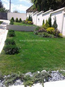 Projektovanje dvorišta