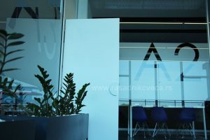 biljke, poslovnmi prostor biodekoracija